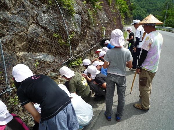 蛇紋岩の露頭を観察