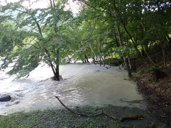 露頭までの歩道は川の一部となってしまっています。
